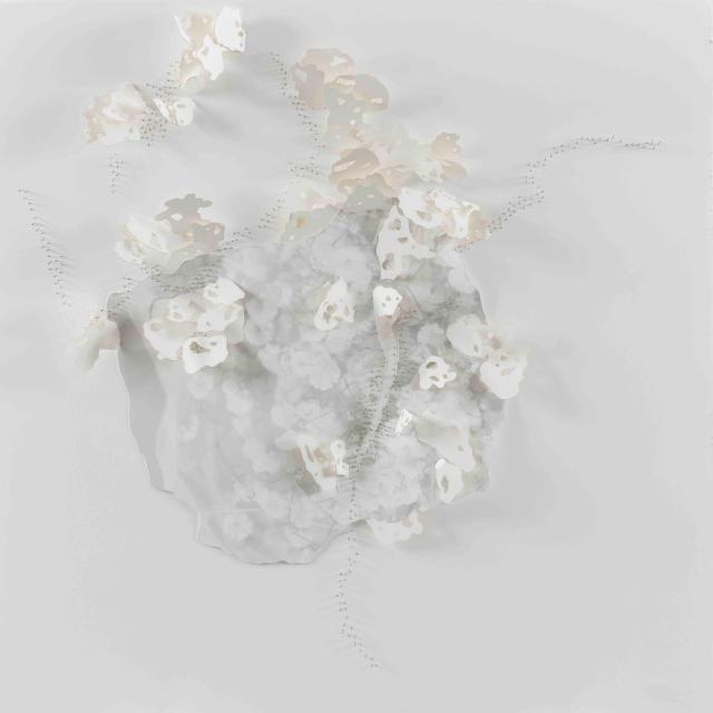 Exposition de l'artiste Safaa Erruas8