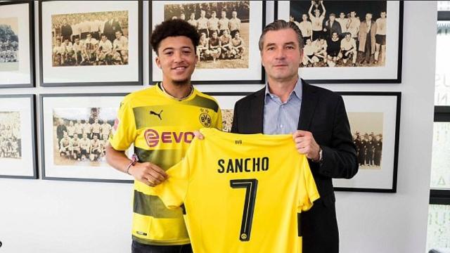 Jardon Sancho
