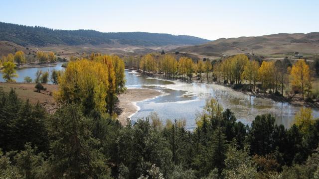 Le Parc National de Ifrane