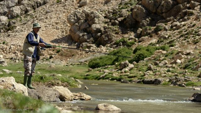 La pêche à la truite