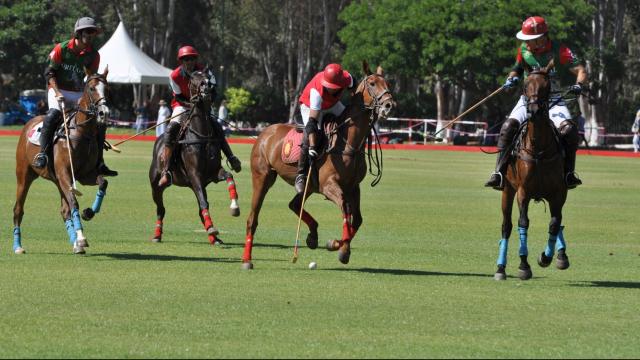Finale du trophée internationale Mohammed VI de Polo 1