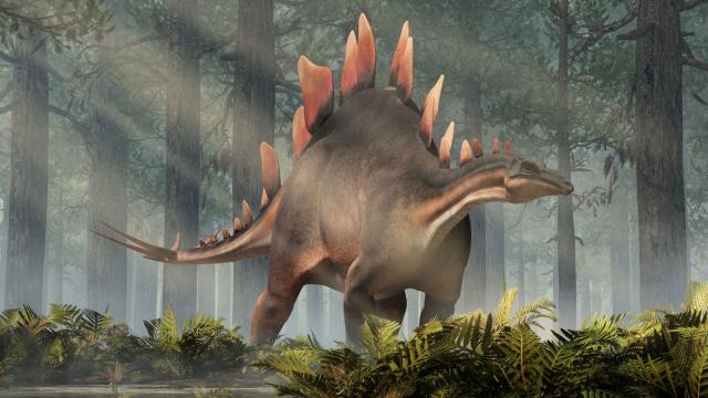 Stégosaure1