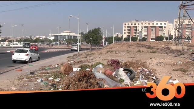 cover: الأوساخ والكلاب الضالة تجتاح مدينة أكادير