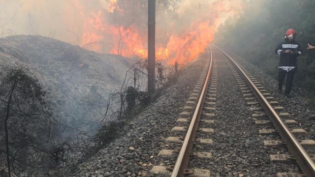 Incendie forêt Boufrah 2