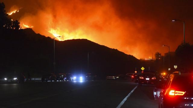 Los Angeles-incendies4