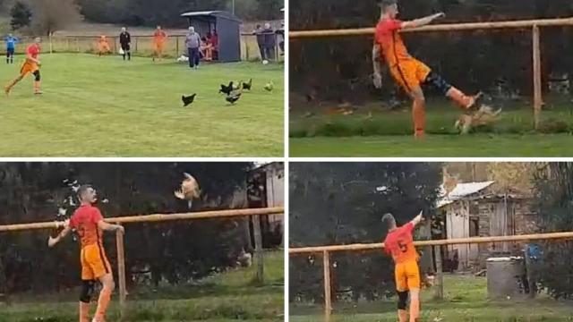 insolite foot Croatie poulet