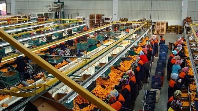 Agro-industrie