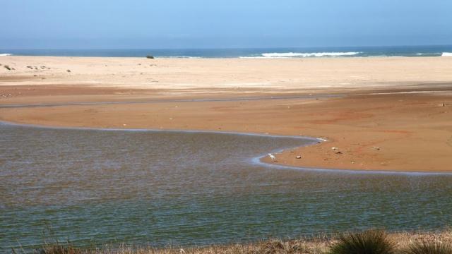 Estuaire Oued Massa