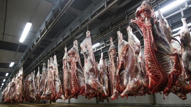 Abattoirs viande bouchers