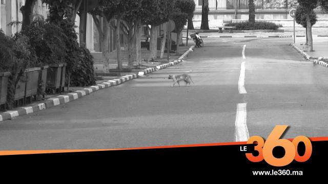 Cover_Vidéo: كورونا تفرغ شوارع أصيلة وتحولها لمدينة شبح