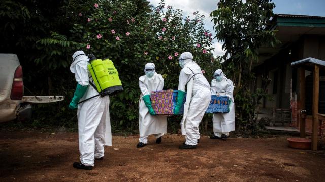 Alhodoud Afrique du Sud. Coronavirus: deux premiers morts dans le pays le plus touché
