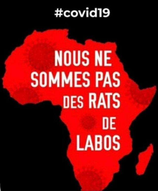 nous ne sommes pas des rats de labo