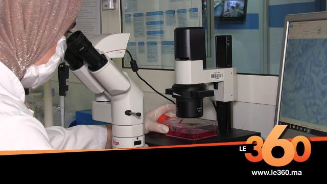 Cover_Vidéo: Découvrez la mission du laboratoire biotechnologique sur l'identification du génome du covid19 Maroc