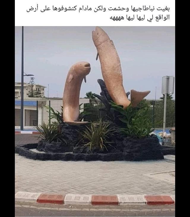 La réaction de la toile marocaine face à la sculpture de poissons pénis