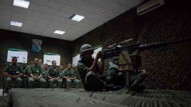 Simulateur de tir pour armes collectives