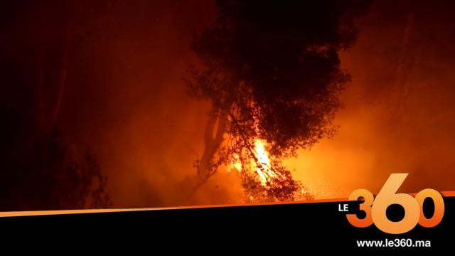 cover vidéo :Le360.ma • هذه تفاصيل حرائق عين لحصن ضواحي تطوان بلسان أحد أبناء المنطقة