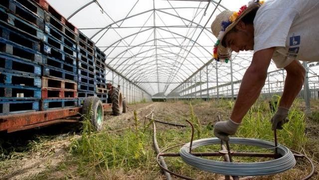 Travailleur agricole