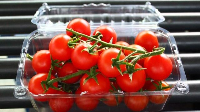 Tomates-cerises en barquette