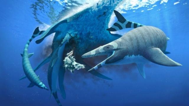 mosasaure, lézard marin