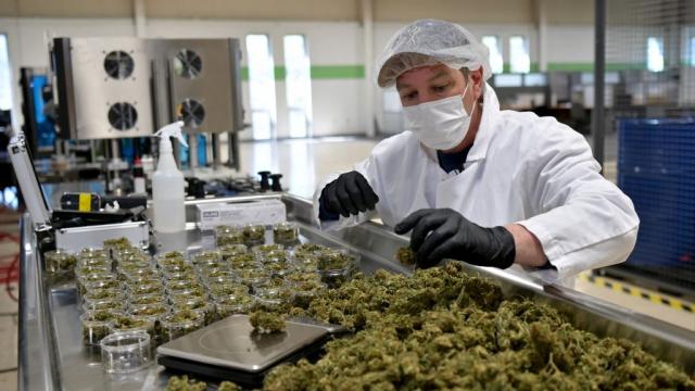 Cannabis - Etats-Unis - Etat de New York - Cannabidiol