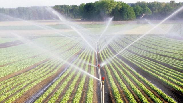 Agriculture Génération Green