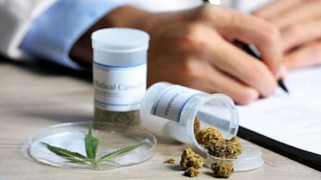 Cannabis à usage médicinal