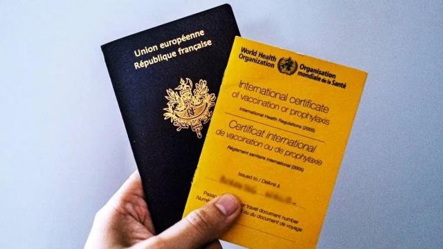 pass vaccinal français