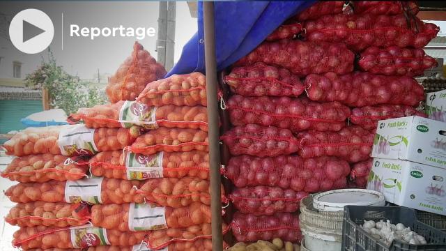 Vidéo. Sénégal: vers l'autosuffisance en pommes de terre et oignons, voire la surproduction