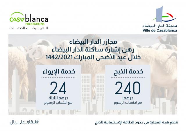 Casablanca: voici le prix à payer pour l'abattage du mouton de l'Aïd