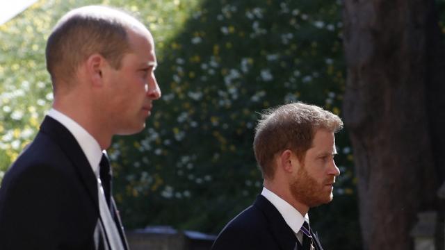 Prince William, duc de Cambridge - Prince Harry, duc de Sussex - Royaume-Uni -