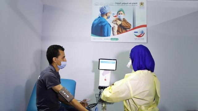 Vaccinodrome salé
