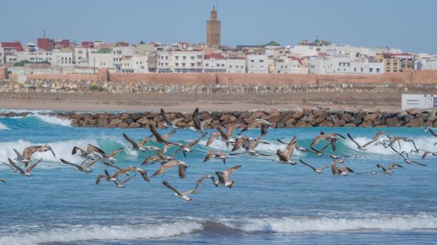 Plage de Rabat - Rabat - Salé
