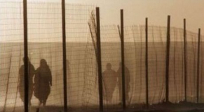 Camps Tindouf