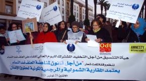 Manif contre violence femmes 25 nob 2013