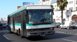 M'dina Bus ok
