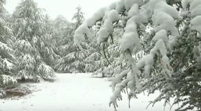 ifrane neige cover