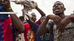 Kinshasa 15 à 20 morts
