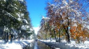 neige Ifrane