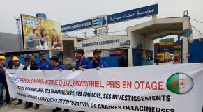 Algérie : la cabale du gouvernement contre le milliardaire Issad Rebrab continue