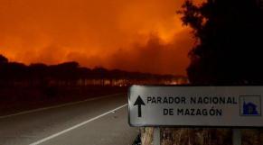Parc naturel de Doñana dans le sud-ouest de l'Espagne