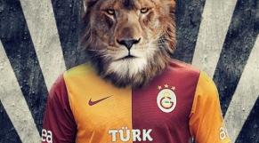 Lions en Turquie