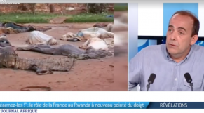 """Vidéo. la France a """"réarmé les génocidaires"""", selon Patrick de Saint-Exupéry"""