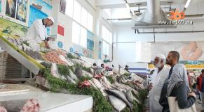 Cover Video -Le360.ma •ربورطاج سوق السمك بأكادير