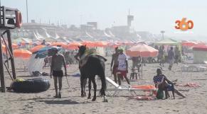 cover vidéo:Le360.ma •Un job d'été sur la plage