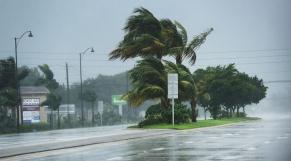 Irma Floride