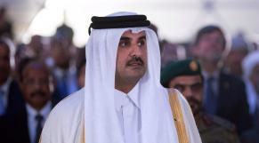 Cheikh Tamim ben Hamad Al-Thani, Qatar