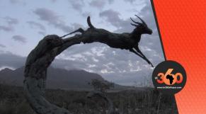 Vidéo. Dylan Lewis Sculpture Garden: la folie rencontre le génie d'un artiste