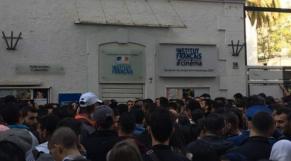 Institut français Alger
