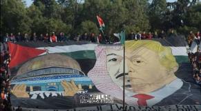 Tifo Algerie
