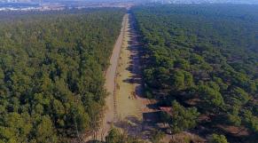 forêt de bouskoura